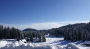 accessible-holidays-slovenia-hotel-jelka