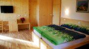 accessible-holidays-slovenia-hotel-jelka-standard-room