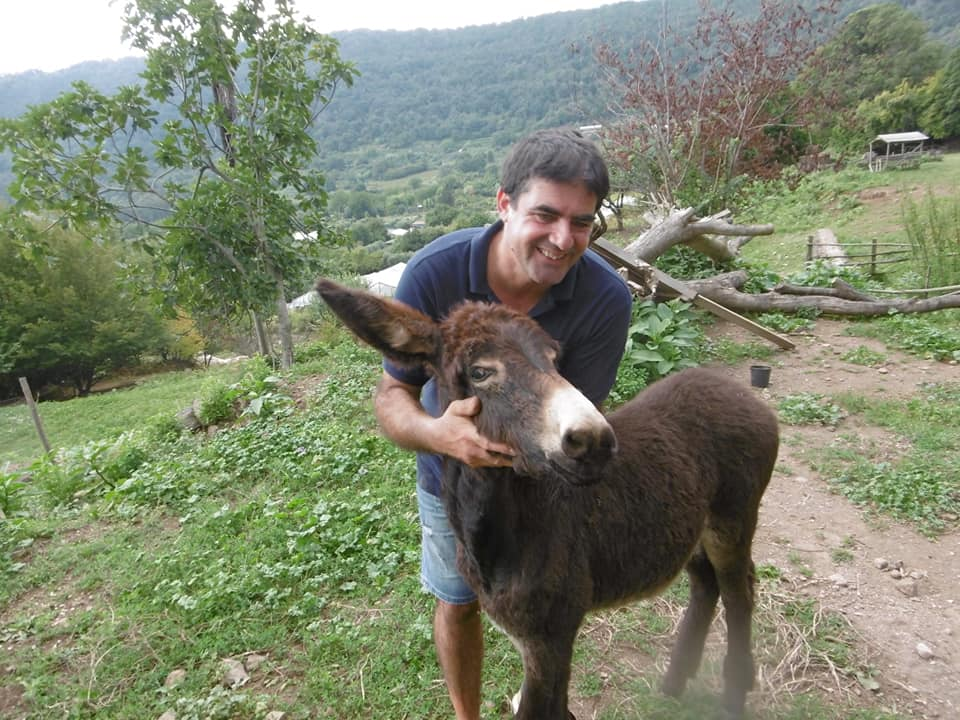 Organif farm, donkey and nice farmer